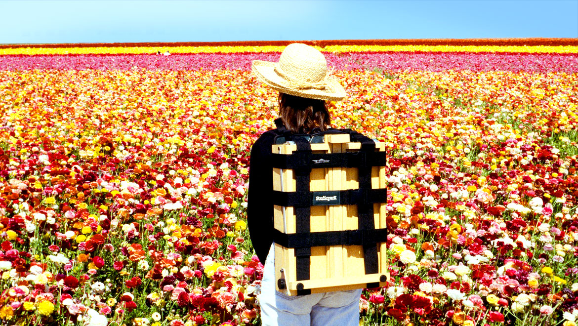 studiopack f/e in the flower fields